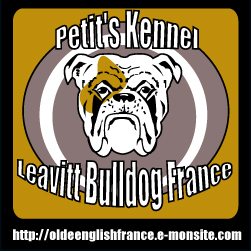 LEAVITT OLDE ENGLISH BULLDOGGE FRANCE